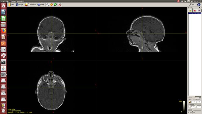 Screenshot from 2020-02-05 09:52:37