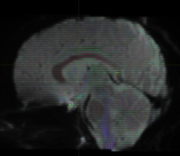 image2%20(1)