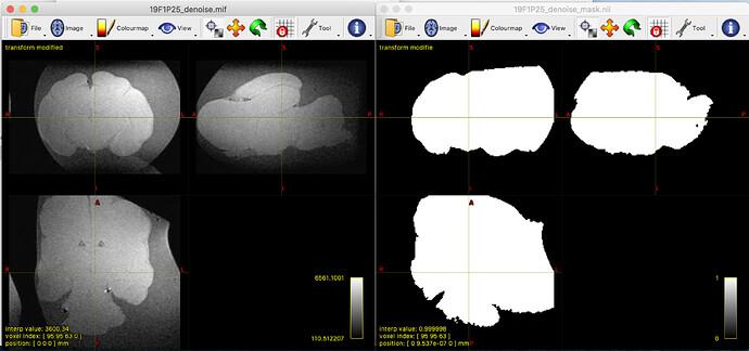 Screen Shot 2021-02-09 at 5.02.50 pm
