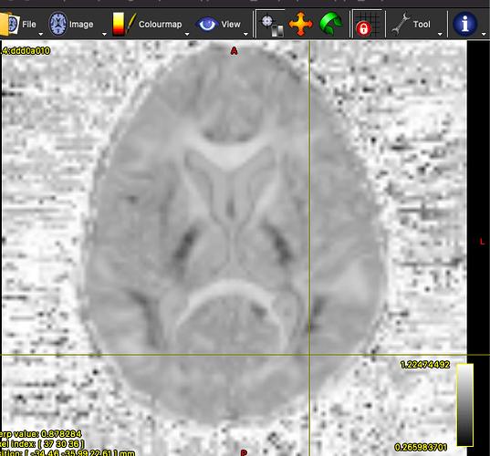 Screen Shot 2021-07-20 at 5.45.10 PM
