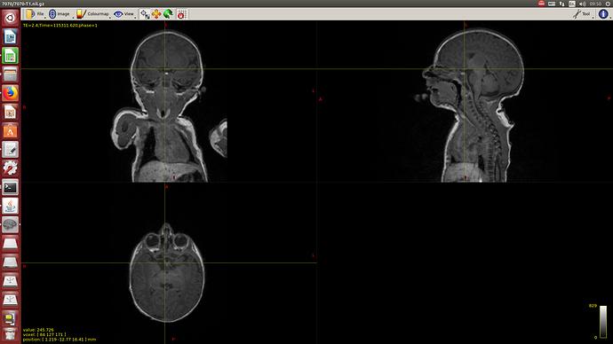 Screenshot from 2020-02-05 09:50:15